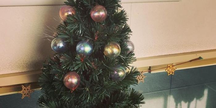 ツリー🎄を出して徐々にクリスマスの準備を始めました🎅